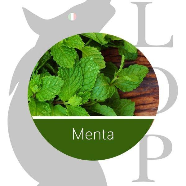 Menta - 10 ml Lop Aroma Concentrato